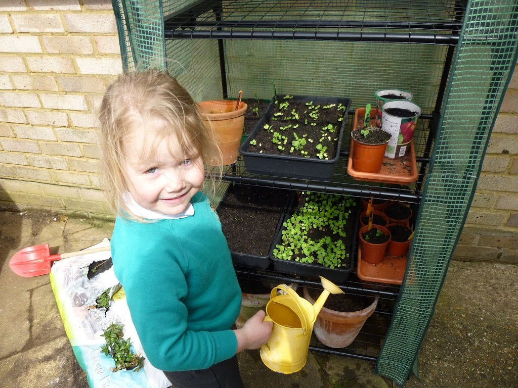 child with mini greenhouse