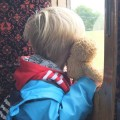 Ned enjoys Train Window Bingo (this time on a steam train!)