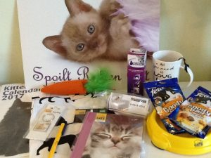 cats protection hamper