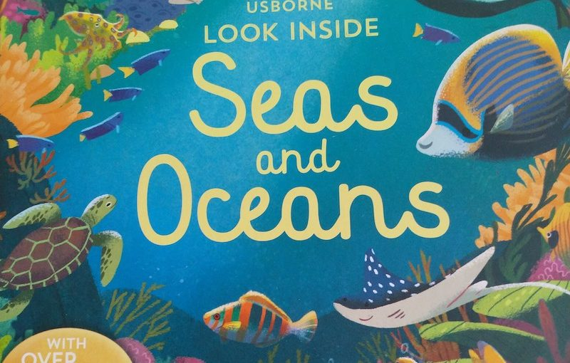 Book Review: Look Inside Seas and Oceans